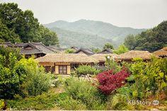 사라져 가는 아름다운 고향의 흔적을 담다 – 경북 영주 '무섬마을 외나무다리'