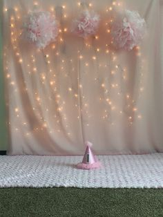 Girl 1st birthday Photoshoot