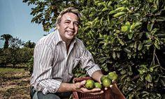 O doce negocio do limão
