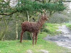 Aiheeseen liittyvä kuva The Cheshire, Driftwood Sculpture, Red Deer, Animal Sculptures, Giraffe, Animals, Enchanted, Parks, Scotland