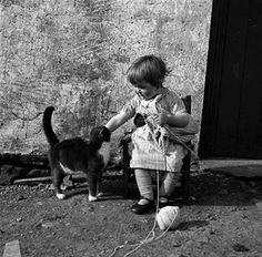 le chat, et la petite tricoteuse
