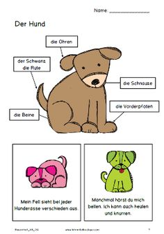 Meine Haustiere | Deutsch | Pinterest | Kindergarten, Language and ...
