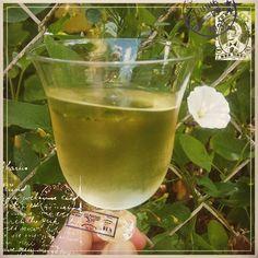 C'est dimanche ! Je lève mon verre à l'amitié, la joie, le bonheur et la vie ! 🙄😍🍸🍸🍸 #jaime #happy #happymilleuille #happiness #igers #blog #blogocrew #blogger #inspiration #enjoy #enjoylife #naturelovers #plantsarefriends #fleurs #jaime #jaimeparis...