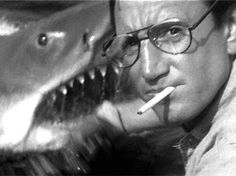 This moment in JAWS has got to be one of the greatest film moments of all time.   Not to mention it triggers one of the most memorable movie quotes of all time.  I am so in love with this movie...
