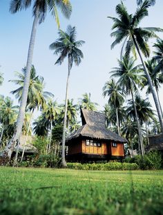 Travel , Phi Phi Island Village Beach Resort & Spa, Thailand