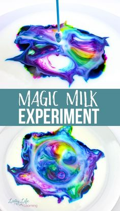 Cool Magic Milk Experiment You Have to Try