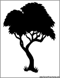 Silhouette Picture - Tree Silhouette
