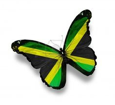 Jamaican flag butterfly