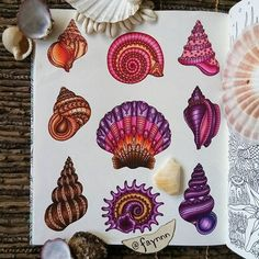 Love the style of these seashells! But if I were to get any of them as tattoos, I wouldn't want color.