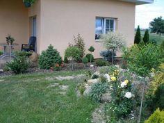 living.cz - vše pro bydlení, dům a byt • Zobrazit téma - katalpa