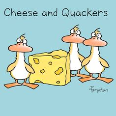 Gouda news! January 20 is Cheese Lovers Day!