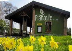 Camping Piantelle in Moniga del Garda (Gardameer, Italië). Bezocht in juni 2013.