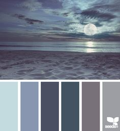 Love this Color Palette - Moonlight Hues, Night Time Coastal Colors Coastal Color Palettes, Coastal Colors, Coastal Decor, Colour Pallette, Colour Schemes, Color Combos, Design Seeds, Deco Design, Color Swatches