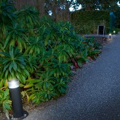 The Royal Horticultural Society's garden, Wisley in Surrey study. Point Sun illuminated bollards and Sunstone ground lighting for walkways and paths in the RHS garden. Urban Furniture, Street Furniture, Lighting System, Lighting Solutions, Cycle Shelters, Cycle Stand, Outdoor Fitness Equipment, External Lighting, Public Realm
