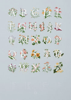 Exploring the fascinating range of edible flowers, this illustrated alphabet combines strong typography with delicate gouache artwork. Influenced by botanical studies and educational wall charts this collection offers anyone the opportunity to discover. Alphabet Design, Alphabet Art, Flower Typography, Typography Letters, Typography Design, Art Mots, Inspiration Typographie, Botanical Fashion, Impressions Botaniques