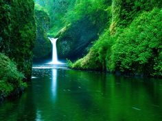 Wallpaper Download 1024x768 Magic waterfall in the green nature. Forests…