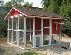 Sturdy, simple chicken coop