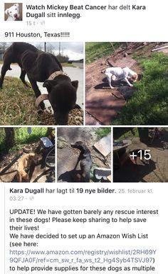 2/27/17 HELP!!! HOUSTON TEXAS!! /ij https://m.facebook.com/story.php?story_fbid=1210932415622661&id=627613240621251&__tn__=%2As