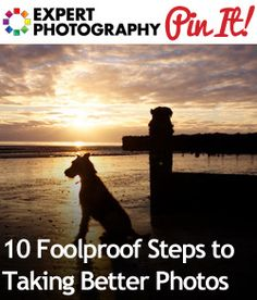 10 Foolproof Steps to Taking Better Photos