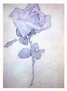 Blue Rose by Piet Mondrian Plant Painting, Painting & Drawing, Piet Mondrian Artwork, Botanical Illustration, Illustration Art, Dutch Painters, Dutch Artists, Illustrations, Op Art
