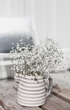 Gypsophilia / Baby's breath flowers in a pot. Soft white and grey decoration idea.
