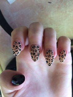 cheetah nail. CK nail
