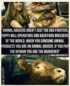 End speciesism. @Regrann from @fairyanimals.vegan -  @Regrann_App from @kellyg1711 🇻 🇪 🇬 🇦 🇳! 🌱 Vegan▪For▪ Them▪ 🐽🐞🐝🐰🐄🐣🐁🐶 #vegan #govegan #veganofig #veganlife #végétalien #vegetalien #véganisme #veganism #animalrights #friendsnotfood #compassion #someonenotsomething #garyyourofsky #animal #animals #animaux #animalliberation #wakeup #végane #speciesism #earthling #earthlings #PETA #beresponsable #meat #veganfood #veganfoodporn #Regrann  Yummery - best recipes. Follow Us…