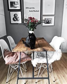So gemütlich und kuschelig kann nur ein Fell sein! Auch im Esszimmer dürfen die trendigen Felle wie das Schaffell Cody nicht fehlen. Sie sind ganz besondere Blickfänge, die Eurem Essbereich noch zusätzlich eine Atmosphäre der Wärme und Geborgenheit verleihen. Hier nimmt man gerne Platz! //Esszimmer Esstisch Fell Skandinavisch Einrichten Ideen Weiss Stühle Offen Hell Holz Gallerywall Bilderwand Katze Blumen Dekoration#EsszimmerIdeen#Fell#Esszimmer#Dekoration#Skandinavisch@oursweetliving