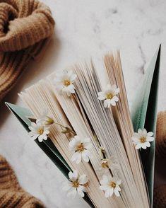 (ENG below) (POL) W końcu znowu mam trochę wolnego czasu i w Cream Aesthetic, Brown Aesthetic, Flower Aesthetic, Aesthetic Vintage, Aesthetic Photo, Aesthetic Pictures, Aesthetic Backgrounds, Aesthetic Wallpapers, Book Wallpaper