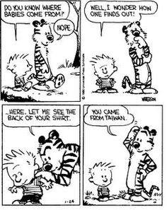 Calvin and Hobbes - You came from Taiwan.
