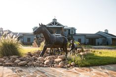 Helios is a premier equine rehabilitation center in Georgia.This state of art facility is designed with the horse in mind. Rubber Pavers, Barn Apartment, Horse Fencing, Running Horses, Dream Barn, Window Shutters, Horse Farms, Stables, Equestrian