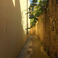 I found silence and peace even in overcrowded Monterosso