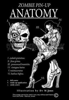 Zombie Pin-Up Anatomy