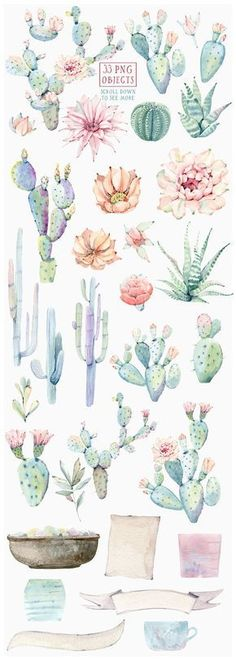 CACTUSES again and again by Lemaris on @creativemarket
