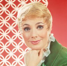 The Partridge Family, Shirley Jones Photograph  - The Partridge Family, Shirley Jones Fine Art Print