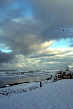 A very unusual happening . . . . . it snowed at Lincoln City and it stuck on the beach.  Something you will rarely see.