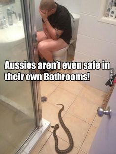 Welcome to Australia. This isn't even the most dangerous thing you'll find in your bathroom Australian Memes, Aussie Memes, Stupid Funny Memes, Funny Posts, Hilarious, Funny Shit, Meanwhile In Australia, Physics Jokes, Best Of 9gag