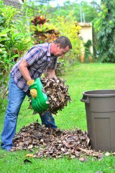 ReLeaf Leaf Scoops Ergonomic Large Hand Held Rakes Fast Leaf & Lawn Grass Removal Tools Perfect Trash Loaders