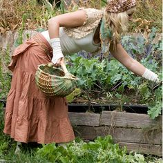 Might as well pick salad for supper too. Oh I better pick something to make up jams & jellies.........