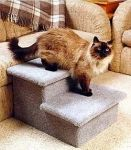 Make use of Quality pet steps so that your pets don't get hurt while jumping across the beds, chairs, sofas or tables etc placed inside the room. If you are a cat lover, the use of Cat furniture for cats can be of equal importance. So, get the right pet steps and make the activities of your pets completely safe and comfortable.