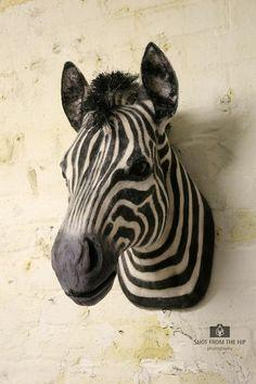 Faux Taxidermy Zebra Head Animal Friendly Decorative by BrokenHare