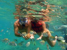 Scubacaribe Punta Cana - Diving Schools