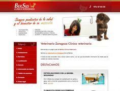 Veterinario Zaragoza www.veterinariozaragoza.es #Zaragoza #animales #veterinario #web