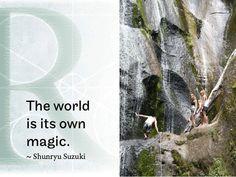 The world is its own magic.  ~ Shunryu Suzuki