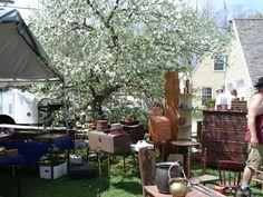 Photo Gallery of Brimfield Antique Show
