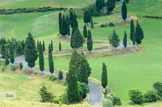 Tuscan road by Francesco Riccardo Iacomino on 500px