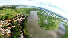 Em Piracicaba, bairro Tanquã é um paraíso para a fauna brasileira