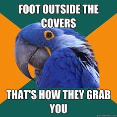 Me and paranoid parrot think alike.