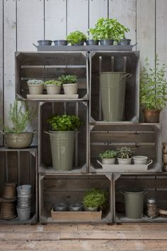 Plans of Woodworking Diy Projects - Garden Trading Florist vase, large 18 medium 15 and small 12 mailable Get A Lifetime Of Project Ideas & Inspiration! Shed Conversion Ideas, Garden Shed Interiors, Greenhouse Interiors, Home And Garden Store, Garden Shop, Cedar Garden, Herb Garden, Garden Tool Shed, Apple Crates