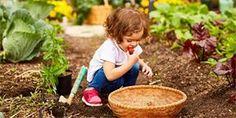 Permakulturní zahrada: Co to je, jak ji založit a jak o ni pečovat Will Turner, Wicker Baskets, Picnic, Outdoor, Mai, Motivation, Permaculture, Earth, Eating Organic